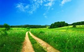 beautiful_scenery-t1